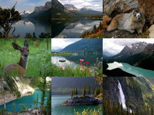 Canada s Beauty