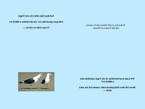 Geschlecht eines Vogels