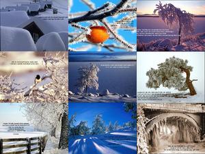 winterlandschaft3