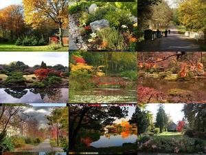 Gärten im Herbst