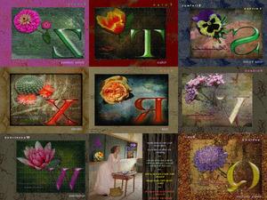 Blumenallphabet Teil 2
