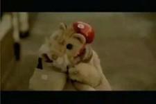 Brief-Hamster