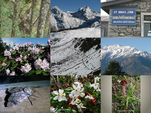 Bilder einer Trekkingtour durch den Langtang Nationalpark-2