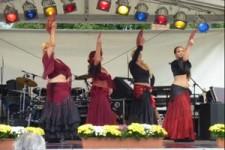 Westerholter Sommerfest 2011