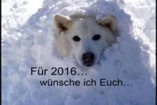 Gute Wünsche für 2016
