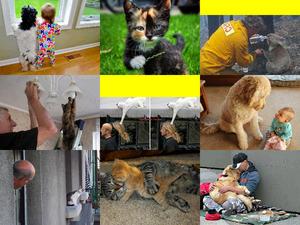Tiere und Menschen sind einfach gute Freunde