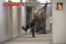 Dinosaurier Büro Streich