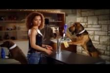 BudLight-Werbung - Dog Sitting