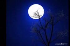 ENYA - Last Time by Moonlight