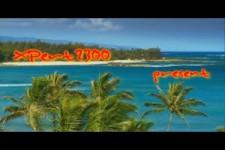 Relax on the Beach - Hawaii