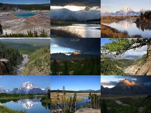 der Yellowstone und Grand Teton National Park in den USA