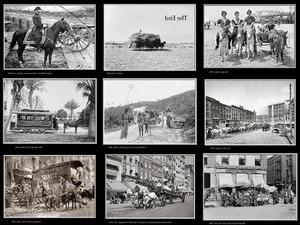 Bilder von Pferden und Mulis von damals