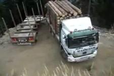 Das nenn ich Lastwagen fahren!
