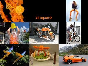 Orange 54