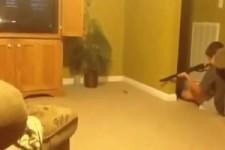 Como matar um rato com uma espingarda