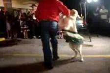 der Salsa tanzende Hund