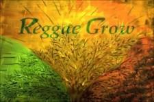 CYNTHIA SCHLOSS-CHA LA LA I NEED YOU-Reggae