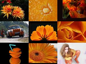 Orange 76