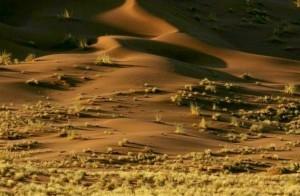 Die Wüste Namib