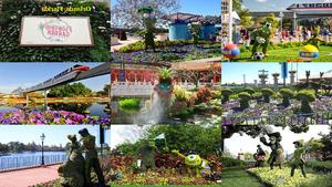 USA Orlando Disney Garten Festival