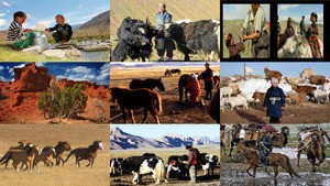 Gedankenreise in fremde Länder Teil 2 - Mongolei