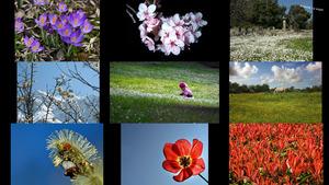 Frühling 20