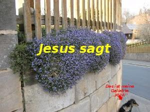 A278 Jesus sagt