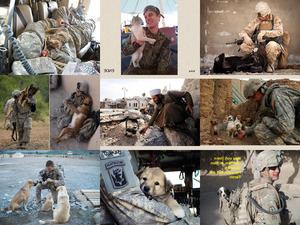 Soldaten - Freundschaft mit Tieren