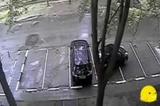 Helden des Parkens