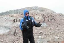 Pinguine flüchten vor Operngesang