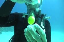Ei aufschlagen unter Wasser