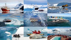 Ausflug zum Südpol