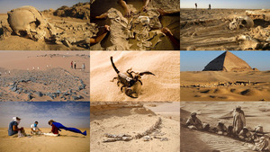 Was verbirgt sich die Sahara