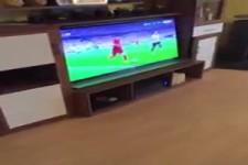 Fußball und Grillen