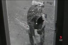 Dämlicher Einbrecher