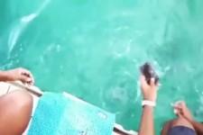 Delfin bringt Handy
