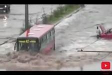 Crazy Bus Drivers