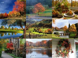 Der Herbst ist schön