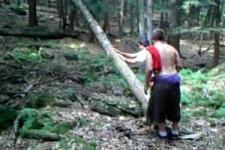 Baum wehrt sich