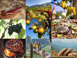 Südtiroler Herbstgrüße