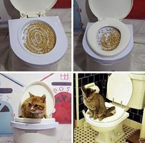 Toilettentrainer für Katzen!