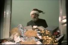 Weihnachten bei Hoppenstedts 2