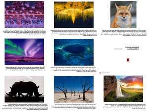 Wildlife Photographer of the Year 2016 Teil 2