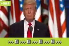 Ich bin der Trump