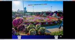 Blumengarten in Dubai