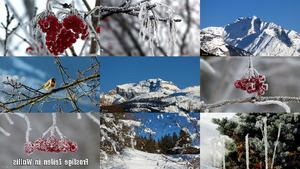 Frostige Zeiten in Wallis