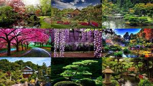 Japan Entspannung Bilder