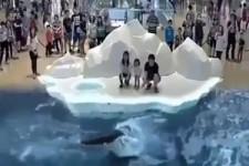 Wal-Show mit Eisbär