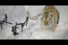 Schöne Bilder mit einer Drohne