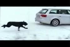 nette Autowerbung Schnee